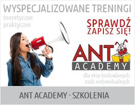 ant akademia